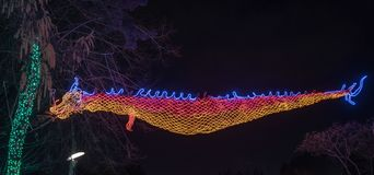 Chinese oriental dragon made of lights stock images