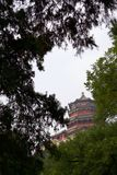 Chinese pagoda framed by green trees. A tall red and blue Chinese pagoda visible through a gap in tall green trees stock images