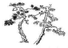 Chinese paint  some kind of pine tree Royalty Free Stock Photos