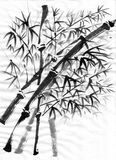 Chinese painting bamboo Royalty Free Stock Image