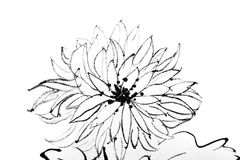 Chinese painting of flower Stock Photography