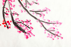 Chinese painting of flowers, plum blossom. Traditional Chinese painting of flowers, plum blossom close up white background royalty free stock photos