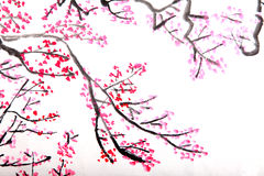 Chinese painting of flowers, plum blossom. Traditional Chinese painting of flowers, plum blossom close up white background Royalty Free Stock Images