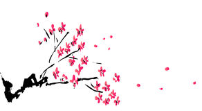 Chinese painting of plum flower Royalty Free Stock Image