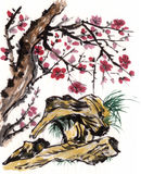 Chinese painting Plum Royalty Free Stock Photo