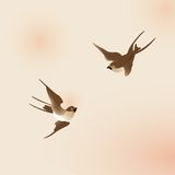 Chinese painting style swallows Royalty Free Stock Photos