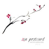 Chinese painting - zen-like natural hand-made vector watercolor sakura illustration. On white Royalty Free Stock Photos