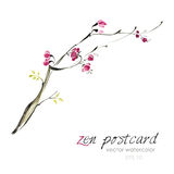 Chinese painting - zen-like natural hand-made vector watercolor sakura illustration. On white Stock Photography