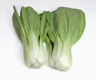 Chinese Pak Choy vegetable. Stock Photos