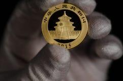 Chinese Panda Gold Coin 1oz 2015 Lizenzfreies Stockfoto