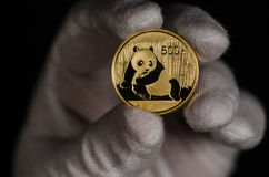 Chinese Panda Gold Coin 1oz 2015 Stockfotografie
