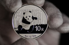 Chinese Panda Silver Coin White Glove Lizenzfreie Stockfotografie