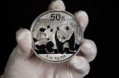 Chinese Panda Silver Coin White Glove Stockfoto
