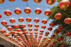 Chinese paper lantern. Royalty Free Stock Photography