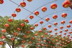 Chinese paper lantern. Stock Photography