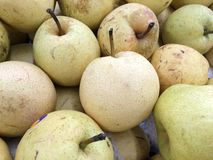 Chinese pear Stock Image