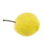 Chinese pear isolated on white Royalty Free Stock Images