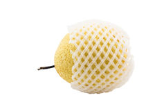 Chinese pear with white foam net protection isolated white backg Royalty Free Stock Photography