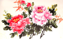 Chinese peony ink drawing Royalty Free Stock Image