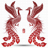 Chinese phoenix Royalty Free Stock Photo