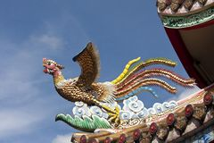 Chinese phoenix on roof Stock Images