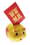 Chinese Piggy Bank and Red  Envelope Stock Photo