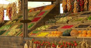 Chinese plantaardige markt stock footage