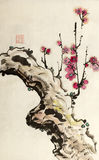 Chinese plum blossom branch Royalty Free Stock Photo