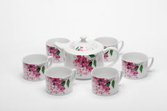 The chinese porcelain teapot and cups Royalty Free Stock Photo