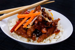 Chinese pork meat with rice. Chinese pork meat with peanuts, vegetables and cooked rice Royalty Free Stock Photos
