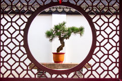 Chinese potted landscape Royalty Free Stock Photography