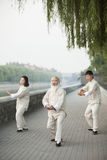 Chinese Practicing Tai Ji Royalty Free Stock Photo