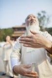 Chinese Practicing Tai Ji Stock Image