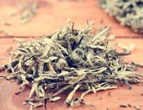 Chinese pressed white tea, silver needle Stock Photos