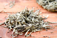 Chinese pressed white tea, silver needle Stock Photography