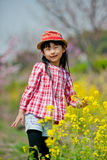 Chinese pretty girl Stock Images