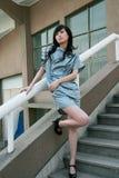 Chinese professionele modellen stock afbeelding