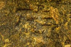 Chinese Pu-Erh tea. Closeup of a pressed brick Royalty Free Stock Photography