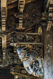 Chinese Qing Dynasty Wood Carving Architecture Stock Afbeelding