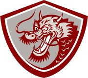 Chinese Red Dragon Head Shield Stock Images