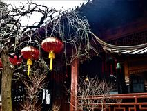 Chinese red hanging lamps, trees and traditional roofs. Chinese red hanging lamps, naked trees, branches and traditional roofs among the nature to let people stock images