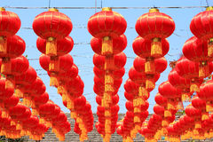 Chinese red lamp at chinese new year. On blue sky background Royalty Free Stock Image