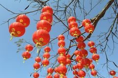 Chinese red lantern decorations Stock Image