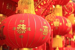Chinese red lantern and fake firecrackers Royalty Free Stock Image
