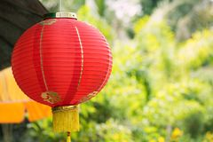 Chinese red lantern with green background. Red lantern lamp hanging at the garden with green nature bokeh background for decoration during the Chinese New Year Royalty Free Stock Photos