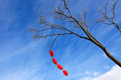 Chinese red lanterns Stock Image