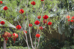 Chinese Red Lanterns by the Pavilion Royalty Free Stock Images