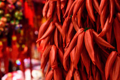 Chinese red pepper decorations Royalty Free Stock Photos