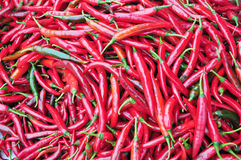 Chinese red pepper market Stock Images