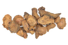 Chinese Rhubarb Root Stock Images